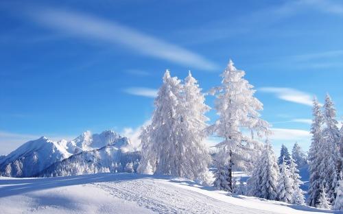 Snow_1680 x 1050 widescreen