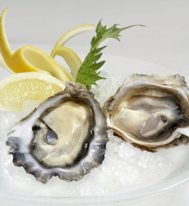oysters-small